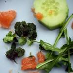 08.02.16: Superfood von der Wiese