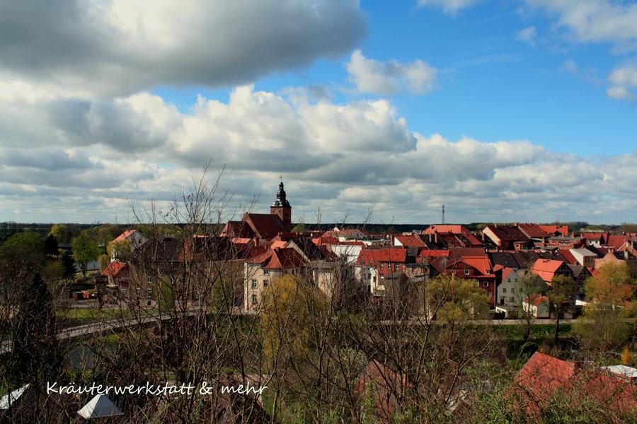 Blick auf Havelberg