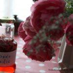 30. Juni + 01. Juli // Heilende Rosen – ein Wochenende in Havelberg