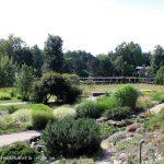 14.08.2017 – Ausflugstipp: Botanischer Garten Potsdam