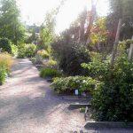 10.08. 2017 – Zu Besuch in Linne's Garten in Uppsala