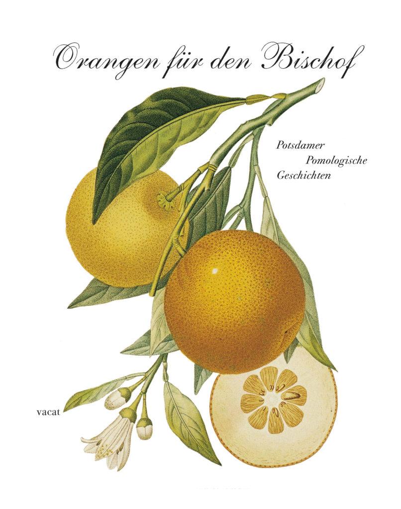 Orangen für den Bischof