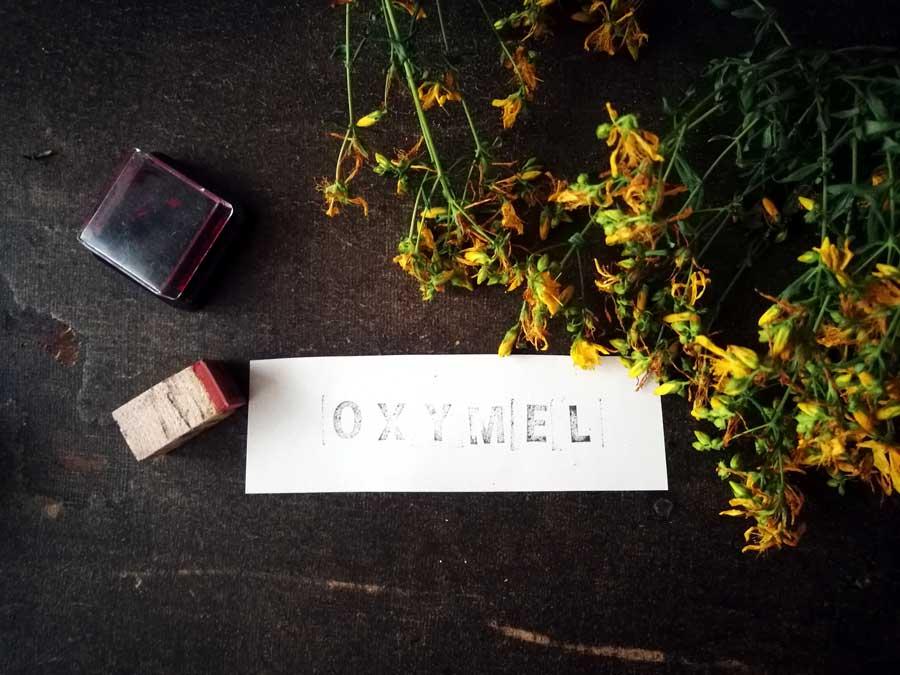 Johanniskraut-Oxymel
