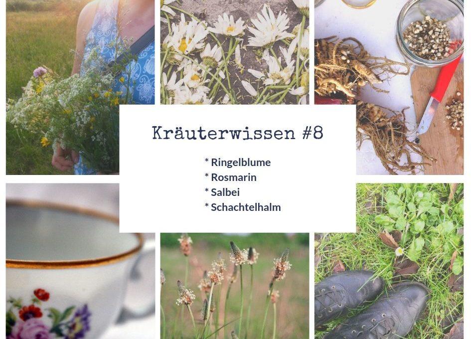 Kräuterweissen Lektion 8