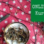 Onlinekurs – Heilpflanzen im Frühling